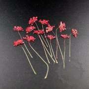 5packs 4-6cm red DIY dry pressed flower for pendant charm jewelry 12pcs each pack 1503180-1