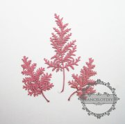 1 small packs real dry pressed flower pink leaf craft for DIY glass dome resin filling 1503097