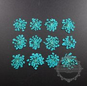 1 small packs blue real dry pressed flower craft for DIY glass dome resin filling 1503114