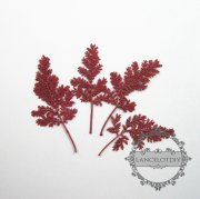 1 small packs real dry pressed flower red leaf craft for DIY glass dome resin filling 1503093
